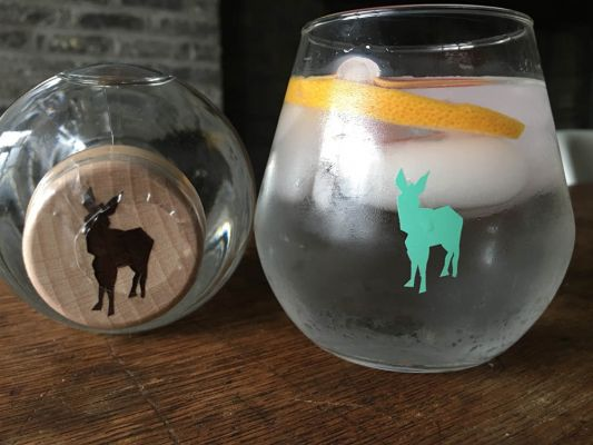 Strange Donkey Glasses | Belgunique