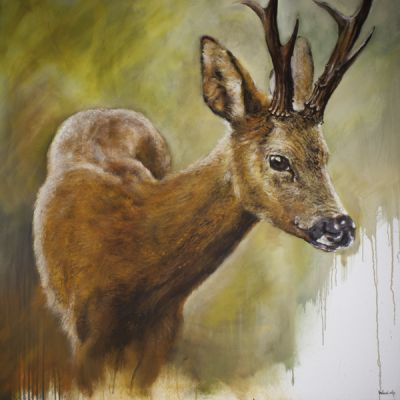 Deer | Belgunique