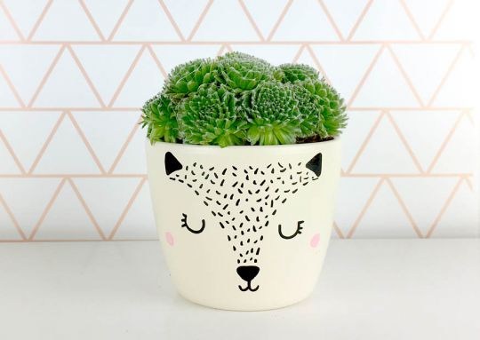 Flowerpot Fox | Belgunique